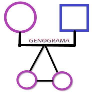 representación gemelos genogram