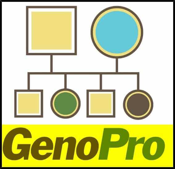 usar genoPro guia