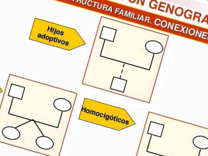 genograma online