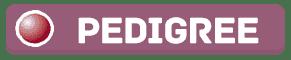 pedigree genograma tool